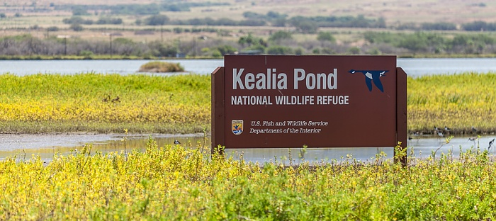 Kealia Pond National Wildlife Refuge Maalaea