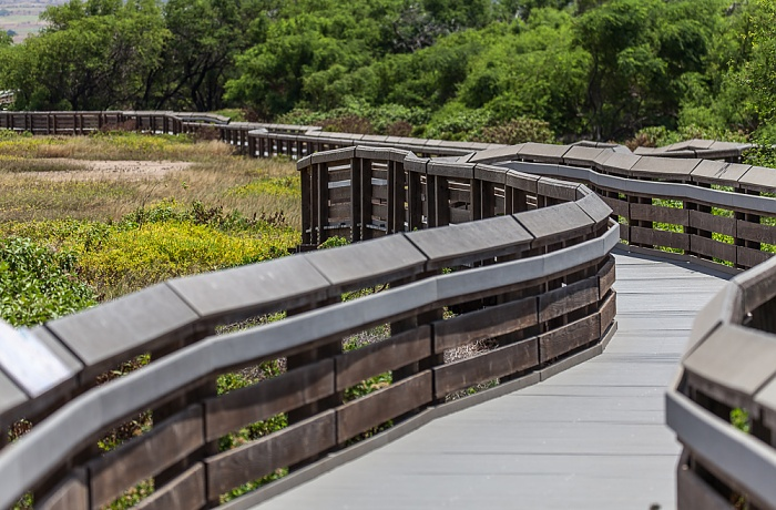 Kealia Pond National Wildlife Refuge: Boardwalk Maalaea