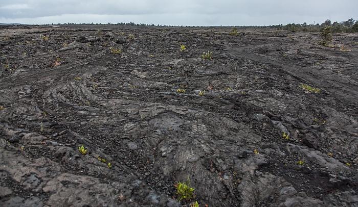 Chain of Craters Road: Lavafelder Hawaii Volcanoes National Park