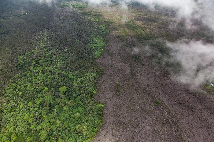Big Island Blick aus dem Hubschrauber: Kilauea-Lavafelder Luftbild aerial photo