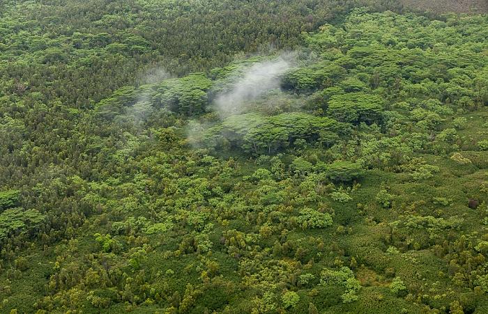 Big Island Blick aus dem Hubschrauber: Kilauea Luftbild aerial photo
