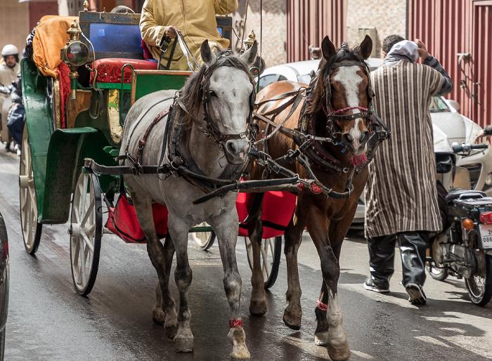 Marrakesch Rue Tougma: Pferdekutsche