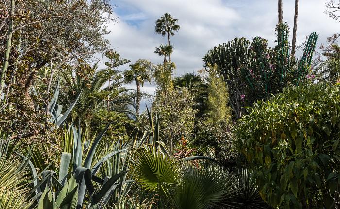 Ourika-Tal Anima Garten (Andre Heller Garden)