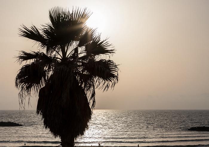Tel Aviv Gordon Beach, Mittelmeer
