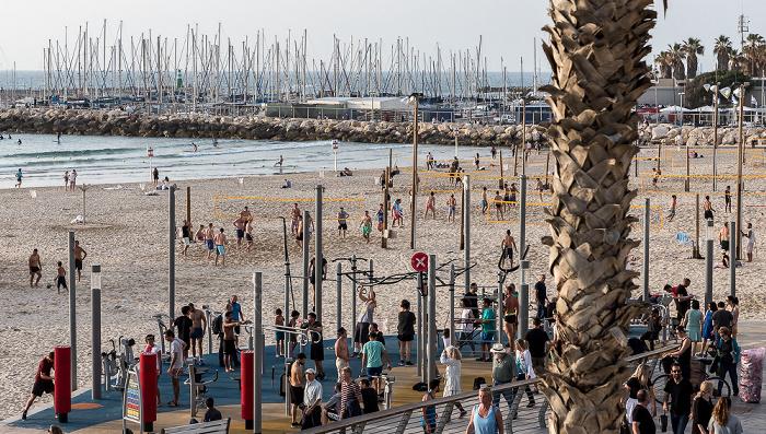 Tel Aviv Gordon Beach Tel Aviv Marina