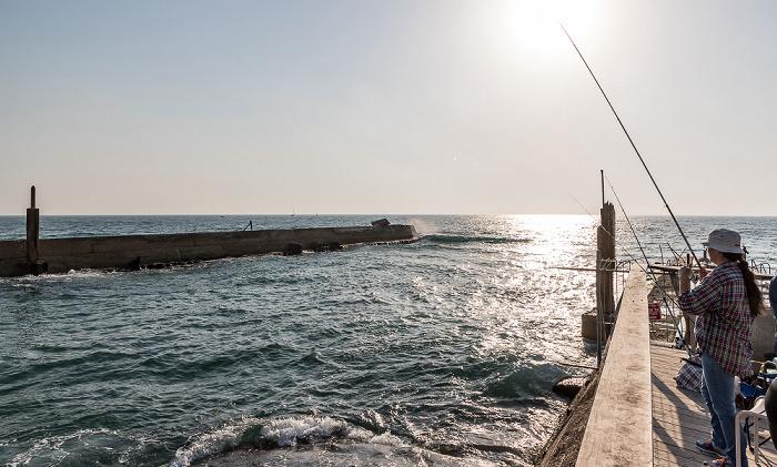 Tel Aviv Port, Mittelmeer
