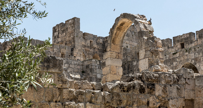 Davidszitadelle Jerusalem