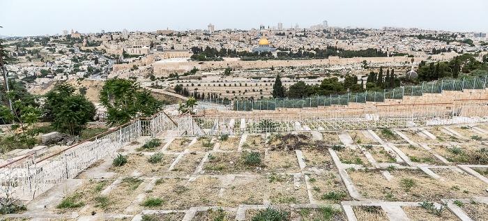 Blick vom Ölberg: Kidrontal, Altstadt mit Tempelberg Jerusalem