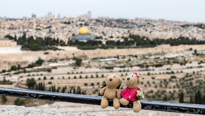 Jerusalem Ölberg: Teddy, Teddine Altstadt Kidrontal Tempelberg