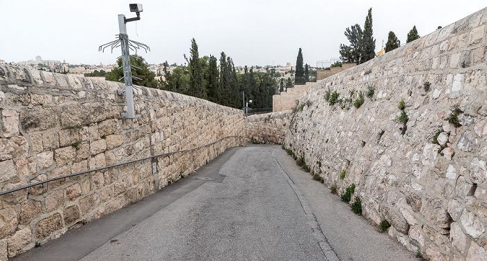 Ölberg Jerusalem