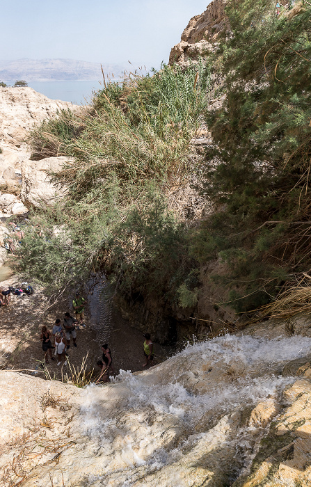 En Gedi Nature Reserve: Wadi David