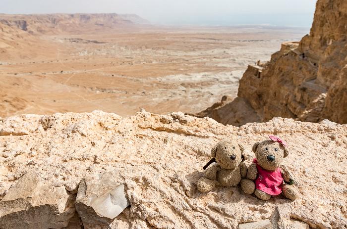 Masada-Nationalpark: Teddy und Teddine