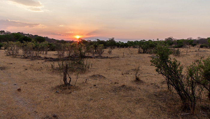 Sikumbi Forest Reserve