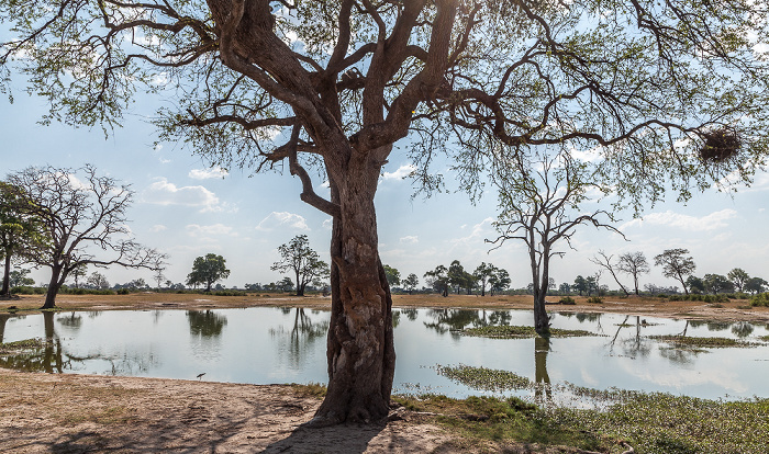 Hwange National Park Makwa Pan