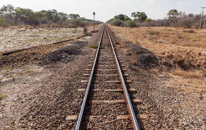 Sikumbi Forest Reserve Bahnlinie Bulawayo - Victoria Falls
