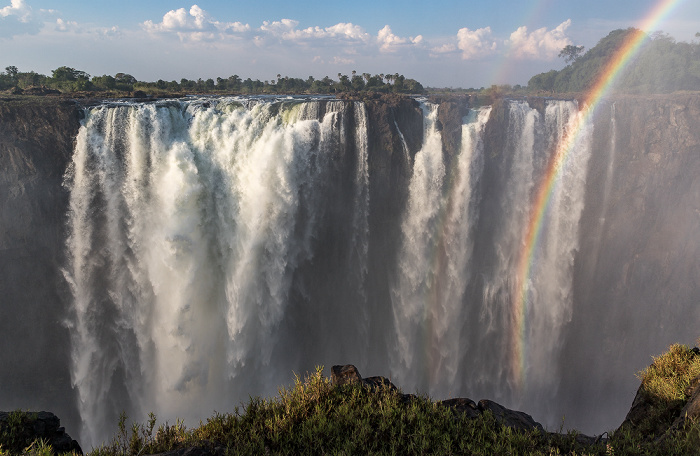 Victoria Falls National Park Victoriafälle, Regenwald