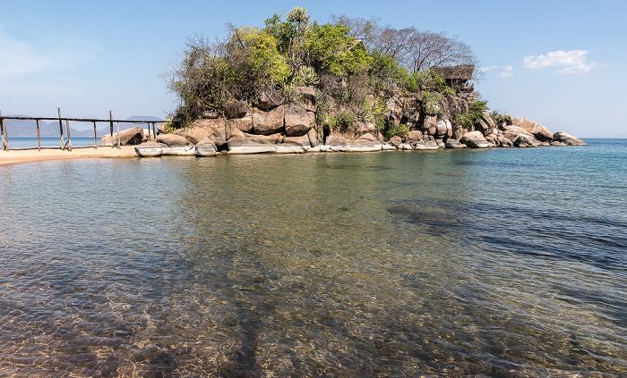 Mumbo Island Malawisee