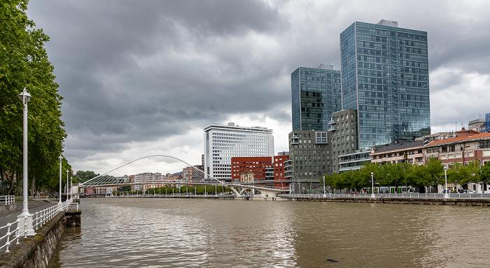 Uríbarri, Ría de Bilbao, Zubizuri (Puente Blanco), Abando mit den Torres Isozaki (Isozaki Atea) Bilbao