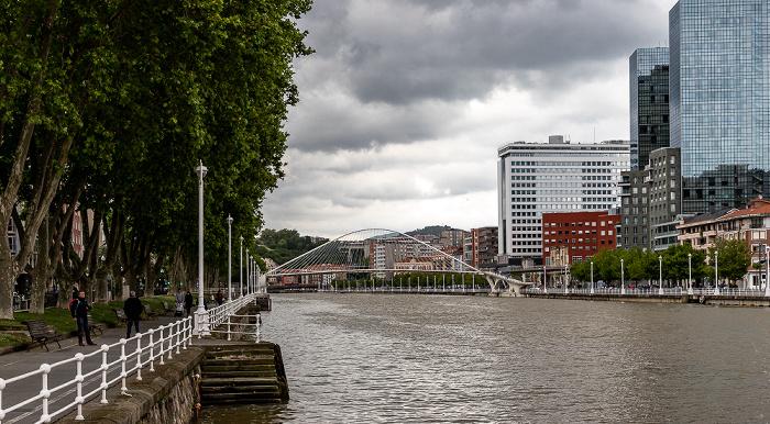 Uríbarri, Ría de Bilbao, Zubizuri (Puente Blanco), Abando mit den Torres Isozaki (Isozaki Atea)