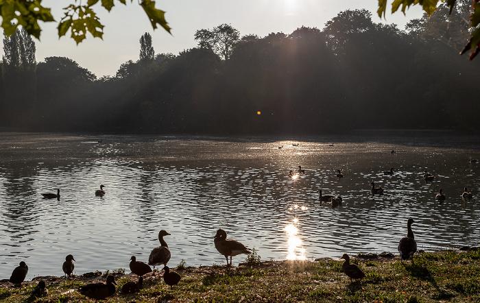 Englischer Garten: Kleinhesseloher See München