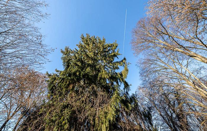 Berg am Laim: Parkanlage Waldstraße / Zwieselbergweg München